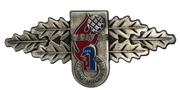 Lesitungsspange der Jugendfeuerwehr Mühlheim